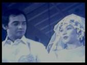 REEL Wedding: Vi and Dindo Fernando