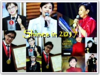 ARTICLES - Shines in 2017 (1)