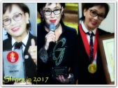 ARTICLES - Shines in 2017 (2)
