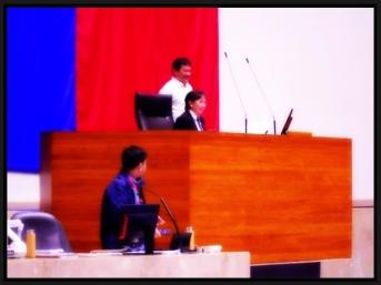 POLITICS - Speaker Vi (11)