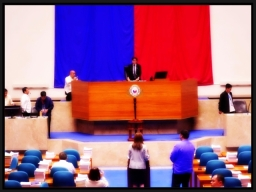 POLITICS - Speaker Vi (9)